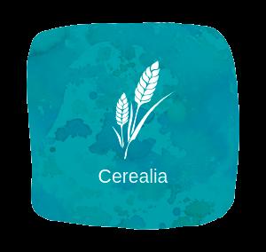 Cerealia, la agricultura en la Antigua Roma